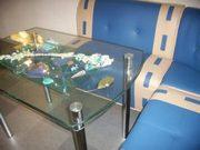 Композиции и мебель (столы) из стекла и сухоцветов